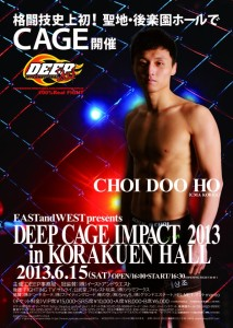 Pôster do DEEP Cage Impact 2013