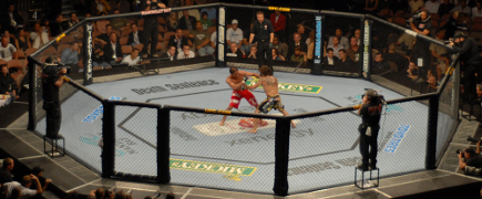 UFC 20 Anos: As Lutas do Ano, parte 1