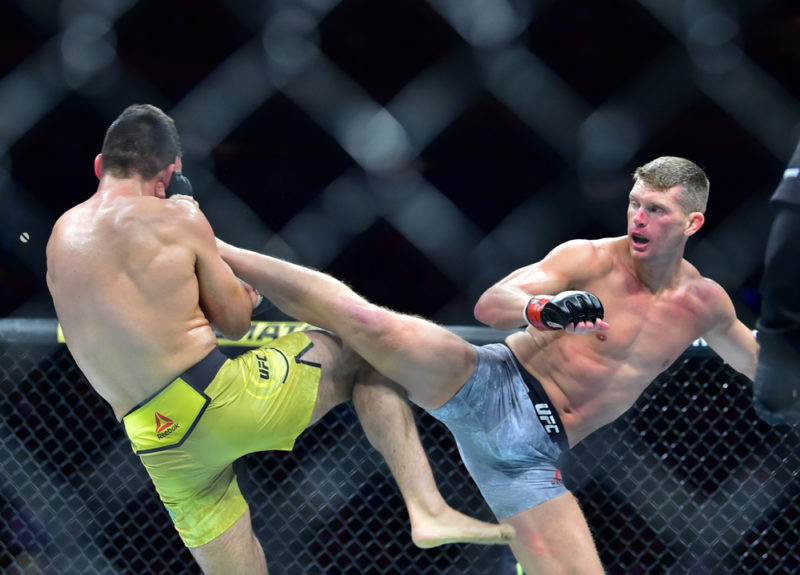 Stephen Thompson venceu Vicente Luque no UFC 244